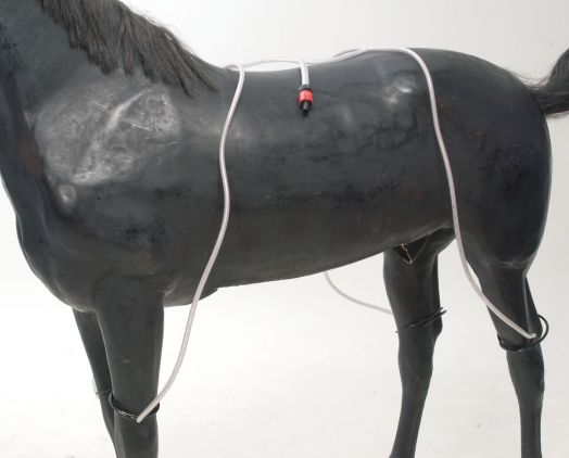 Система охлаждения лошади с помощью эластичных трубок